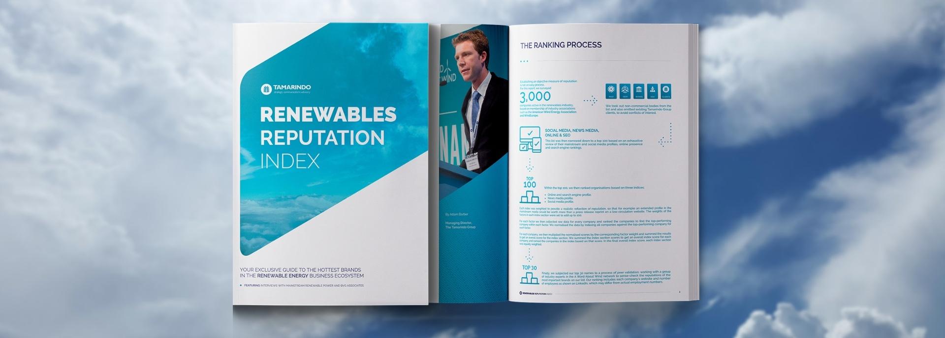 Renewables Reputation Index report
