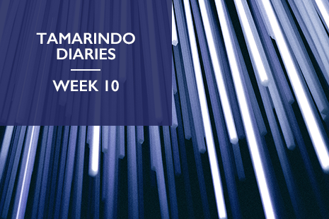 Tamarindo Diaries Week 10: don't dismiss online events, there are more benefits than you think.
