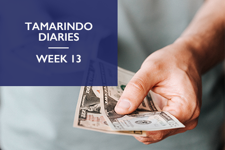 Tamarindo Diaries week 13 - How well do you understand your target customers?