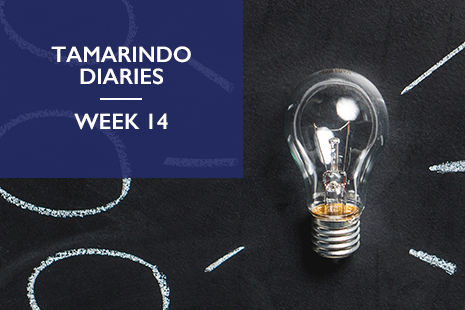 Tamarindo diaries week 14: can a business run out of news?