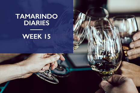 Tamarindo Diaries Week 15: How can I build deeper digital connections?